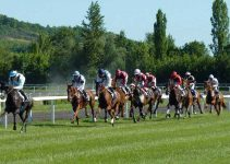 Off Track Betting Definition